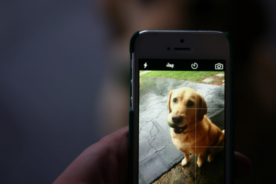 Phone Photos: Making quality photos a snap for the everyday photographer