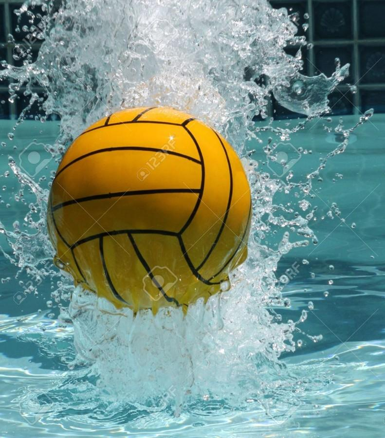 Thomas Worthington Boys Water Polo Excels