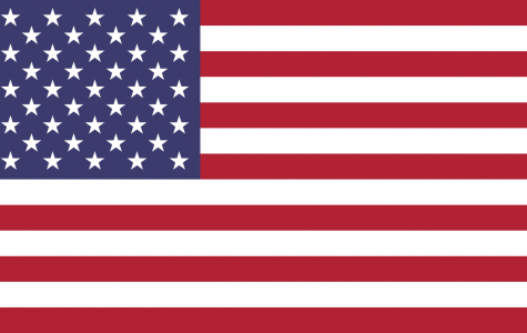 Trump on Burning American Flag