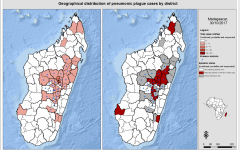 Madagascar Plague Outbreak