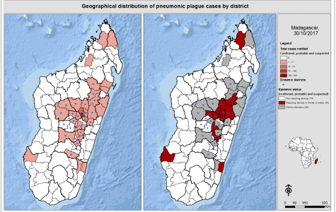 Madagascar Plague Outbreak