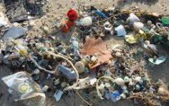 European Parliament Plastic Ban