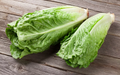 E. coli Outbreak in Romaine Lettuce